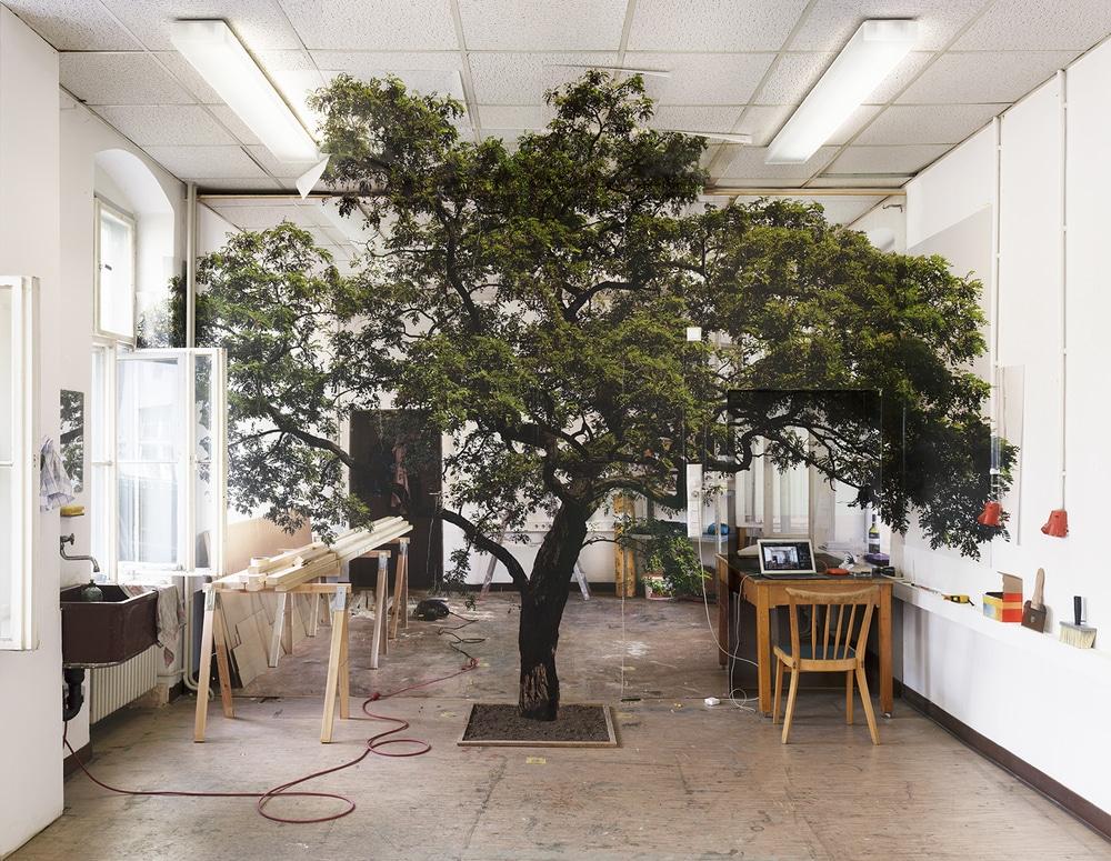 Chris engman landscape for candace 2015 digital pigment print large